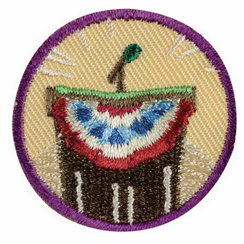 Junior Inside Government Badge
