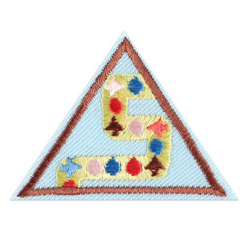 Brownie Coding Basics Badge